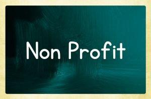 Davis Nonprofit D&O Liability Insurance